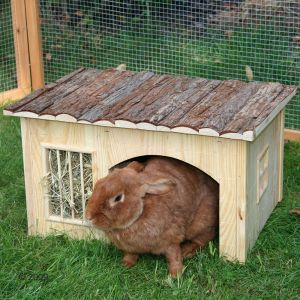 Nature Plus Small Rabbit House With Hay Rack