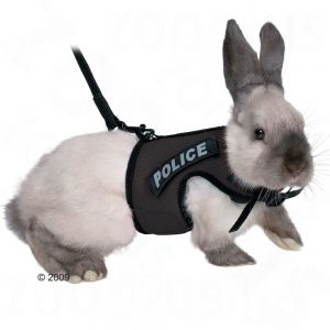 Trixie Rabbit Lead and Harness XBunny